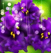 Vector fondo con violetas románticas sobre un fondo verde — Vector de stock
