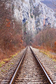 Railroad — Photo