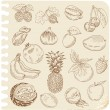 Set of Doodle Fruits - for scrapbook or design - hand drawn - Imagen vectorial
