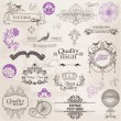 Vector Set: Calligraphic Design Elements and Page Decoration — Stock Vector #10634218