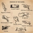 Set of vintage hands - Various Positions in vector -High Quality — Stock Vector #9605130