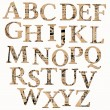 Vintage Alphabet based on Old Newspaper and Notes - in vector — Cтоковый вектор #9605416