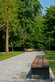Bench and avenue in park — Foto Stock
