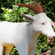 Goat zodiac. — Stock Photo