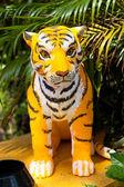 знак зодиака тигр. — Стоковое фото