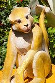 Monkey zodiac. — Stock Photo