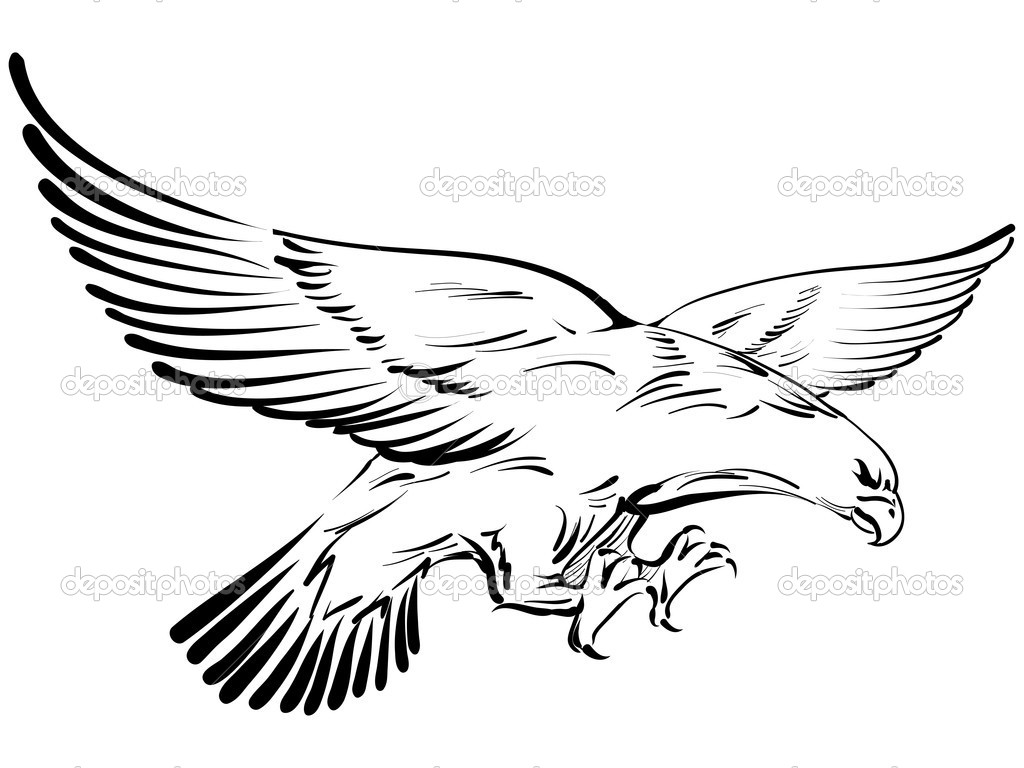 zentangle stylized flying eagle hand drawn doodle stock auto