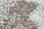 Cracking soil — Stockfoto