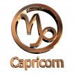 Capricorn sign — Stock Photo