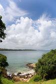 Las nubes, el mar y la playa con árboles — Foto de Stock