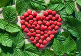 Red Raspberry Heart with green leaves — Stock Photo