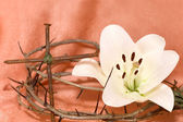 Crown of Thorns, crucifix and Easter white Lily — Photo