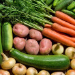 Fresh homegrown vegetables — Stock Photo