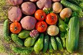 本地出产的新鲜蔬菜 — 图库照片