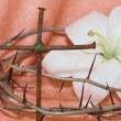 Crown of Thorns, crucifix and Easter white Lily - Stock Photo