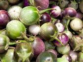 Fresh eggplant — Stock Photo