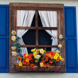 Country style window with flowers — Stock Photo