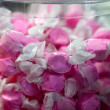 Pink Saltwater Candy — Stock Photo #8732592