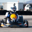 Racing Go Kart — Stock Photo #9020693