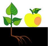 Apple y la colmena — Vector de stock