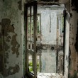 Stock Photo: Abandon door