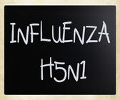 Images of the H5N1 Influenza Virus — Stock Photo