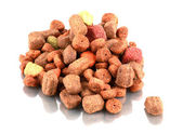 Dog Food — Stock Photo