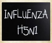 изображения вирус гриппа h5n1 — Стоковое фото