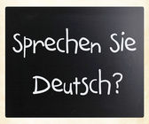 """Sprechen sie Deutsch"" handwritten with white chalk on a blackbo — ストック写真"