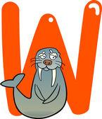 W for walrus — Vector de stock