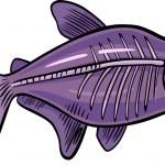 poisson de dessin animé aux rayons x — Vecteur