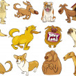 Stock Vector: Cartoon dogs set