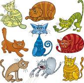 Cartoon cats set — Stock Vector