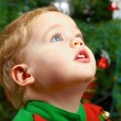 Baby boy on Christmas — Stock Photo #8232481