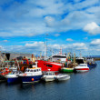 Stock Photo: Rossaveel harbour
