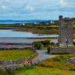 Muckinishnoe Tower House — Stock Photo