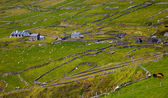 Rural landscape on Dingle Peninsula — Stock Photo