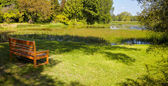 Empty wooden bench in the park — Stockfoto