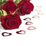 Valentine's Day rose. — Stock Photo #8591460