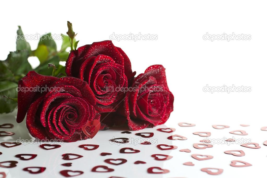 Roses with dew drops on the hearts on a white background. — Stock Photo #8591409