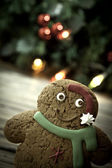 Ginger bread cookie — Stock Photo