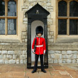 Stock Photo: Grenadier Guard in stance