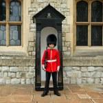 Grenadier Guard in stance — Stock Photo