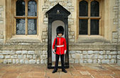 Grenadier Guard in stance — Stock Photo