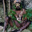 The Leader of a Papuan tribe of Yafi - Stock Photo