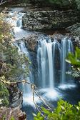Pencil Pine Falls, Cradle Mountain — Stock Photo
