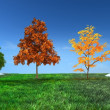 Stock Photo: 3d concept Four seasons