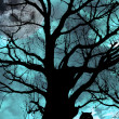 Owl perched in ancient tree on moonlit night — Stock Photo