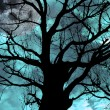 Ancient tree on moonlit night — Stock Photo