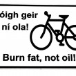 Stock Photo: Irish burn fat not oil road sign on white
